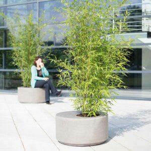 DIVISION Pflanztisch natur-beton