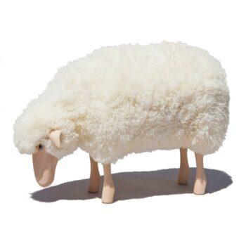 Kleines Schaf grasendmit weißem Schaffell